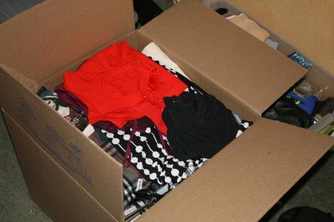 Elya's sorting of her possessions