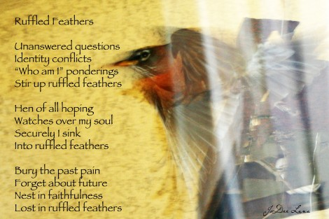 Ruffled Feathers Red-breasted Robin Poem