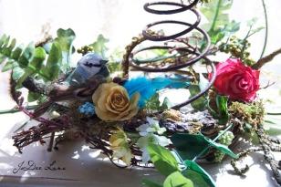 Blue_Bird_on_Nest_960