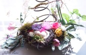Bottom Nest_with_Spring_960