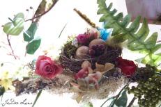 Nest_on_Branch_966