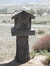 Dads Birdhouse on Stump